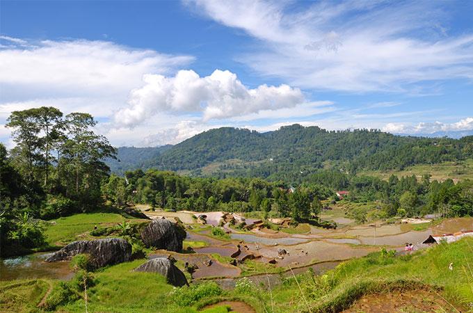 4D3N Toraja Tour