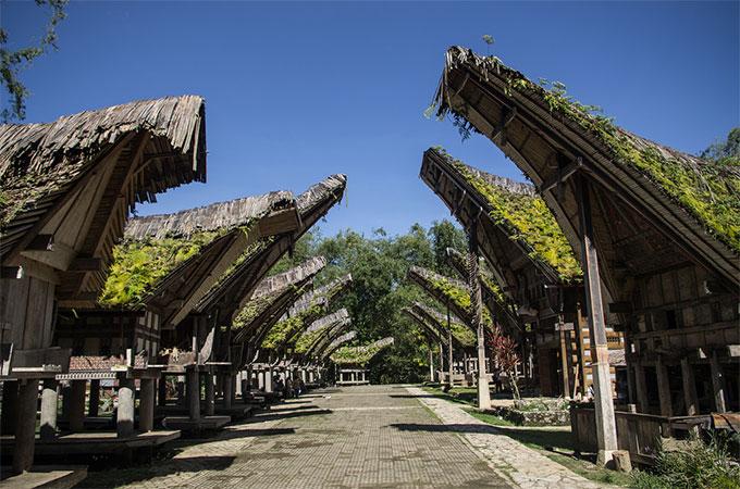 3D2N Toraja Tour